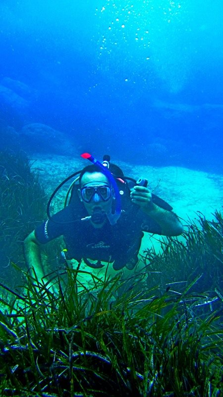 SSI openwaterdiving